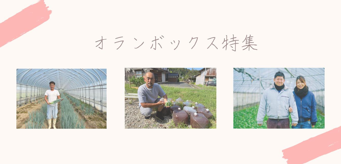 【記事用】オランボックス特集